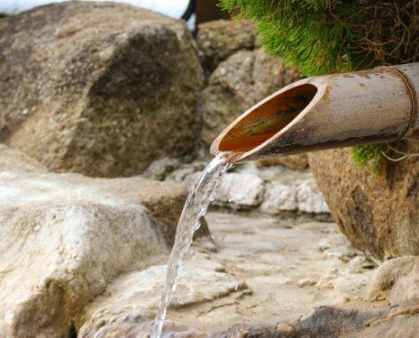 fonte d'acqua naturale nel bamboo