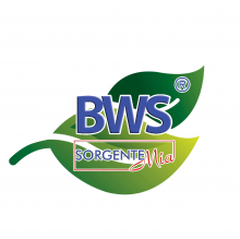 Logo BWS SorgenteMia Foglia verde